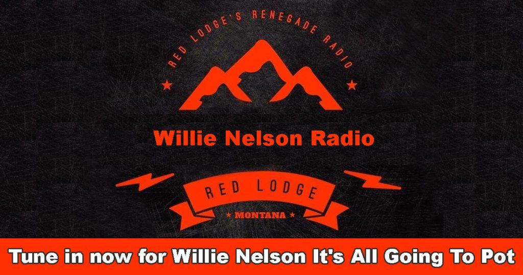 Willie-Nelson-It's-All-Going-To-Pot